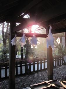 宇治神社の手水舎