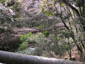 吾平山上陵