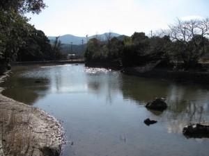 松下社に隣接する池