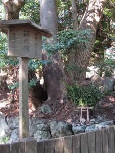 榊巻(さかきまき)