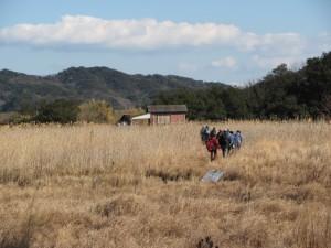 湿地帯(国道42号線から池の浦海水浴場へ)