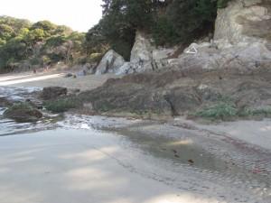 池の浦海水浴場から粟皇子神社へ