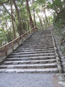 多賀宮への石階