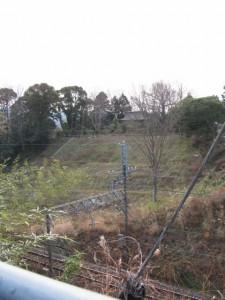 近鉄沿線から望む長峯神社
