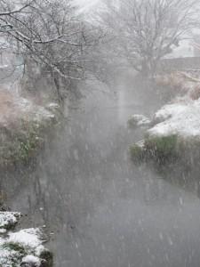 2011年の初雪(桧尻川)