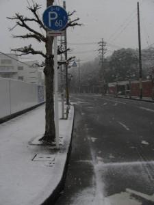 2011年の初雪(月夜見宮付近)