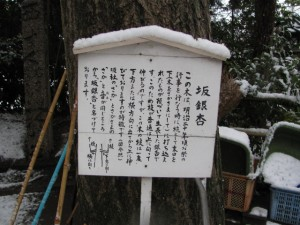 坂銀杏(坂社)