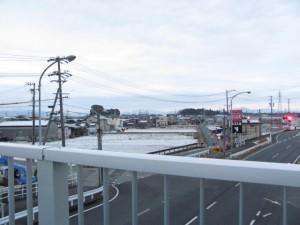 歩道橋から望む高向大社の社叢(右)