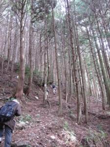 三瀬坂峠へ