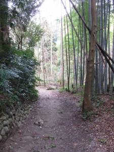 多岐原神社から三瀬の渡し場跡へ