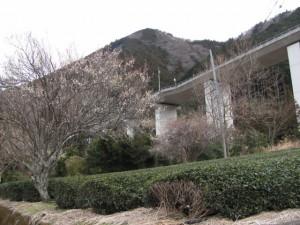 船木神社へ