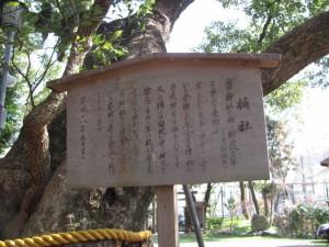 楠社(箕曲中松原神社)