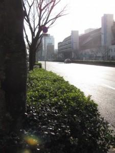 近鉄 大阪上本町駅前にて