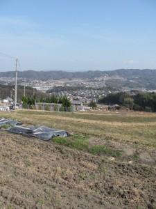 工事迂回路(暗峠~南生駒駅)からの風景