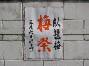 臥龍梅 梅祭