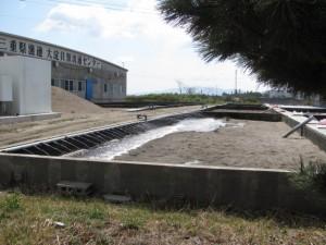 三重県漁連 大淀貝類流通センター
