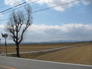 大淀の田園風景(3月)