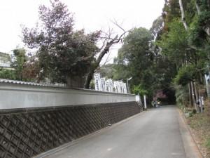 田宮寺と田宮寺神社