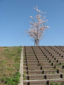 ラブリバー公園(宮川)堤防道路へ