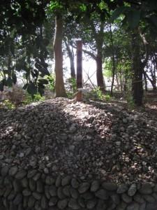 皇居遥拝所(離宮院公園)