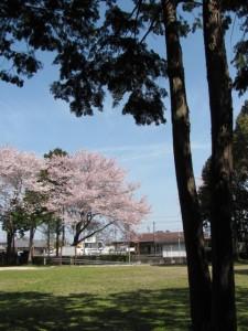 離宮院公園