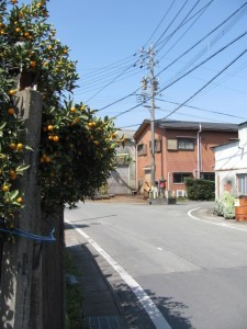 六地蔵石(ろくじぞうせき)