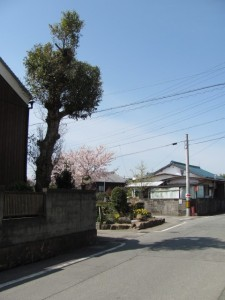 山神さん(離宮院公園~湯田神社へ)
