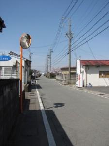 有田神社の桜(離宮院公園~湯田神社へ)