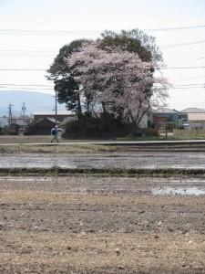 田丸道遺跡付近