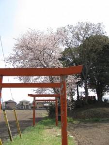 湯田神社から田丸城址へ