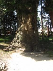 八柱神社(粟野町)