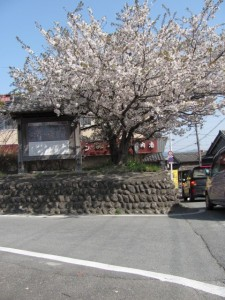 桜の渡しの案内板