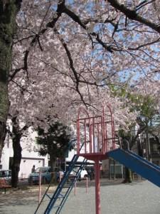 奥新町公園