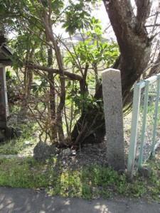 大水神社(御薗神社付近)