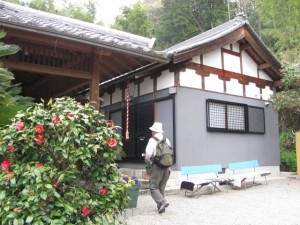 海柘榴市(つばいち)観音堂