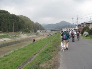 大和川左岸を