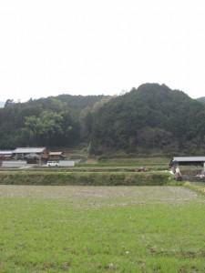 十二柱神社から長谷寺へ