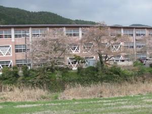 桜井東中学校