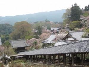 登廊(長谷寺)