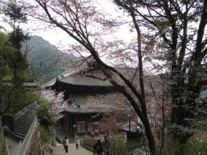 本堂(長谷寺)