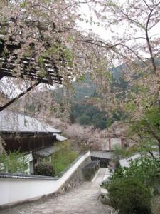 登廊を望む(長谷寺)