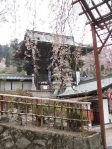 仁王門と入山受付(長谷寺)