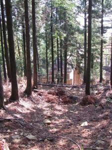 卒塔婆(朝熊ヶ岳山頂方面から金剛證寺へ)
