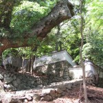 林崎文庫の裏門付近