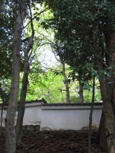 大水神社から林崎文庫の土塀を望む