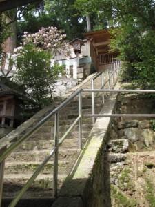 本殿(椋下神社)
