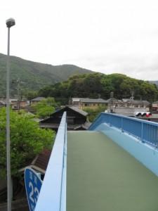 中村歩道橋から宇治山田神社の社叢を望む