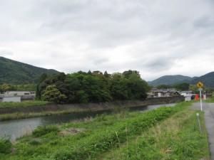 五十鈴川左岸から大土御祖神社の社叢を望む