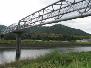五十鈴川左岸から神宮神田を望む