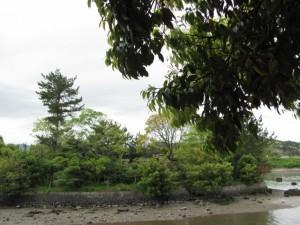 朝熊神社から鏡宮神社を望む